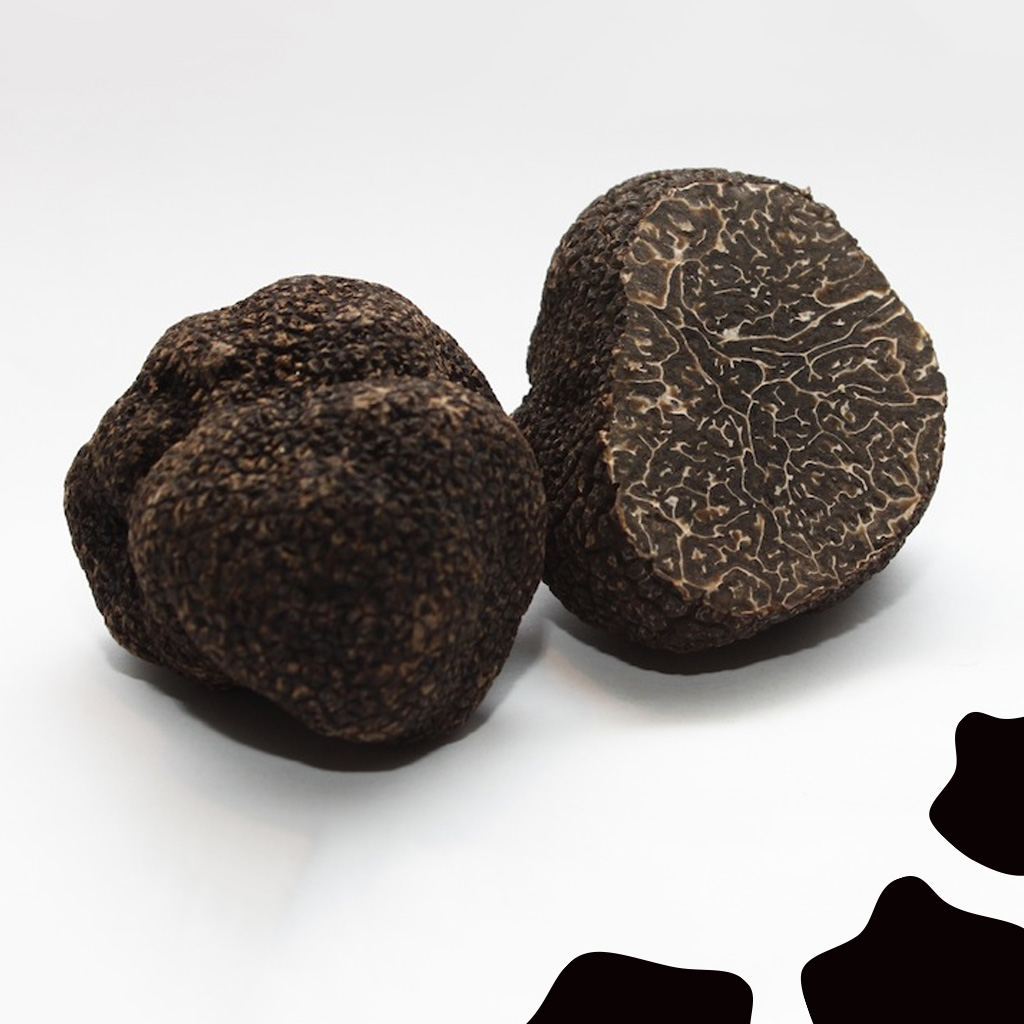 casadellaburrata-truffe_noire